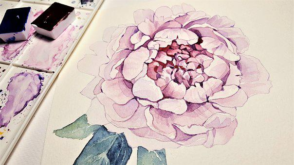 Art, Painting, Flower, Pivonka, Color, Pink, Paper