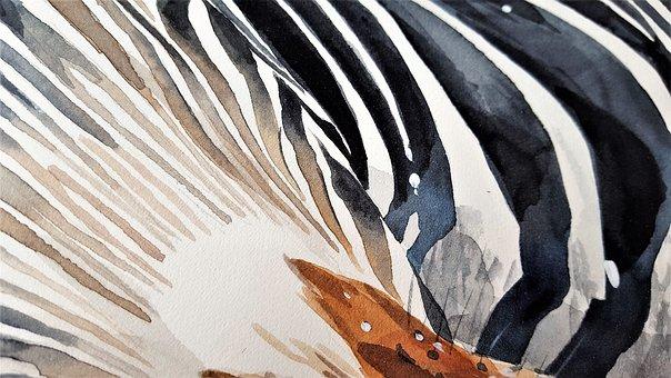 Art, Painting, Watercolor, Zebra, Stripes, Black, Paper