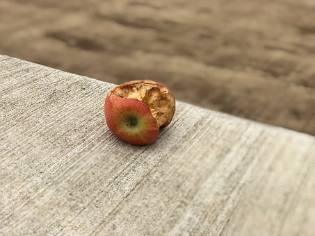 Wood, Woods, Fruit, Food, Background, Refreshment