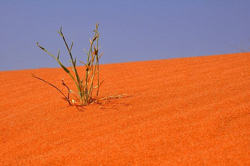 Nature, Sky, Landscape, Dry, Outdoors, Summer