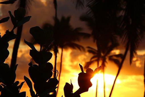 Kapa'a, Kauai, Hawaii, Sunset, Silhouette, Island