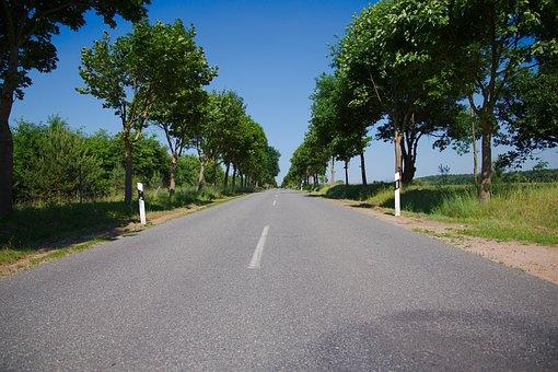 Road, Instructions, Asphalt, Tree, Nature, Roadway