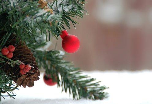 Christmas, Christmas Bauble, Ball, Branches, Snow