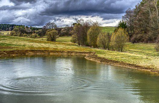 Nature, Waters, Reflection, Grass, Landscape, Biotope