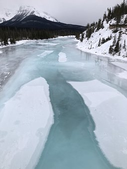 Winter, Ice, Frozen, Nature, Purity