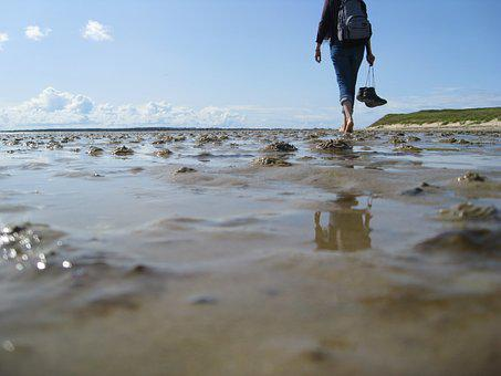 Sea, Sand, Ocean, Wadden Sea, Mudflat Hiking, North Sea