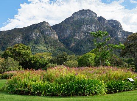 Kirstenbosch Botanical Garden, Landscape, Mountain, Sky