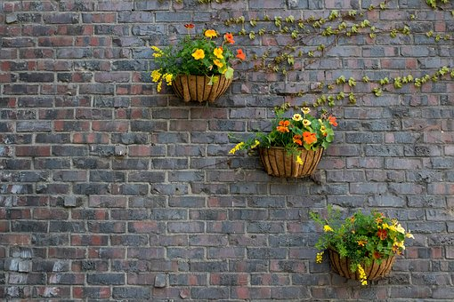 Brick, Wall, Stone, Potted Plant, Plants