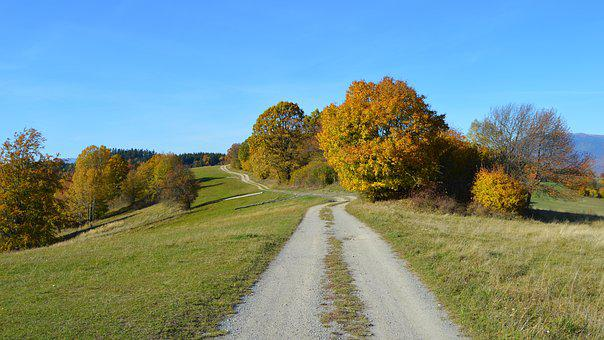 Path, Autumn, Nature, Trees, Country, Slovakia, Clear