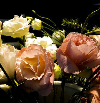 Flower, Rose, Bouquet, Romance, Nature