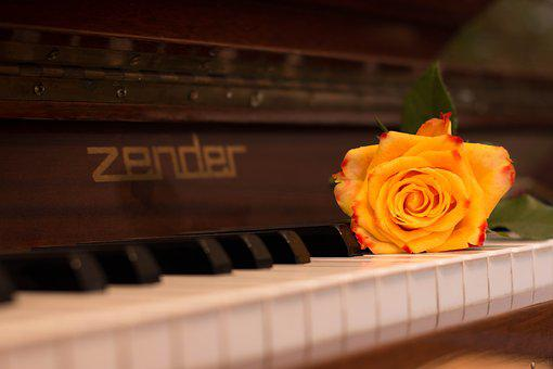 Piano, Harmony, Ivory, Music, Wood, Rose, Instrument