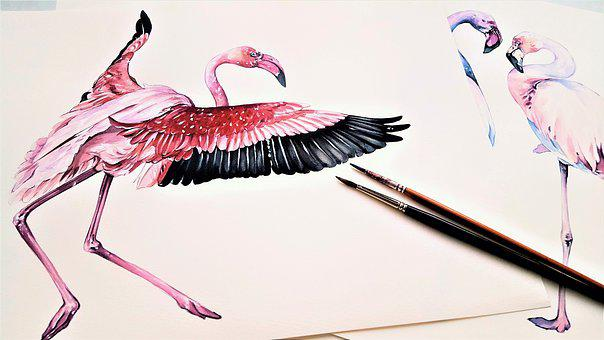 The Greater Flamingo, Animal, Bird, Art, Pink, Wings