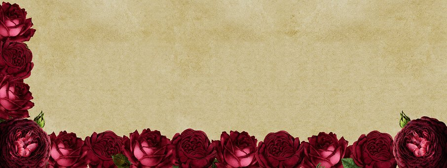 Roses, Frame, Background Image, Flowers, Red, Red Roses