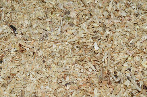 Sawdust, Abstract, Mock Up, Dry, Wallpaper, Structure