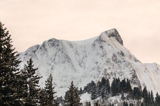 Mountain, Cold, Snow, Winter, Snow-covered, Wintry