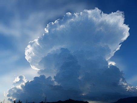 Cloud, White, Giant, Sky, Blue, Fungus, Nature