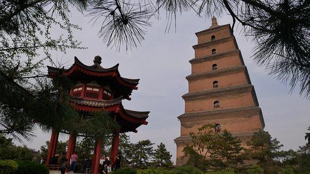 Tree, Architecture, Pagoda, Travel, Traditionally