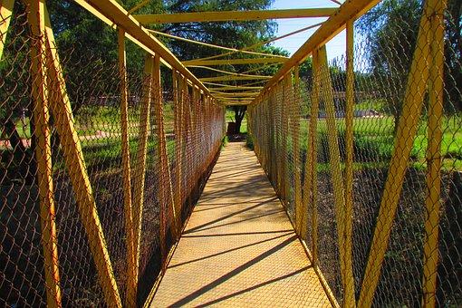 Park, Bridge