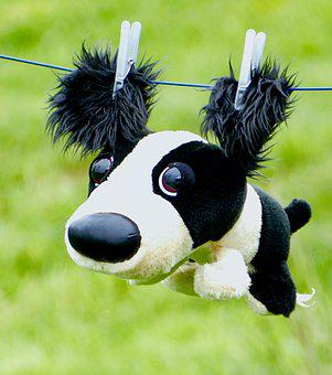 Animal, Lawn, Plush, Dog, Wire, Wire Cloth, Cute