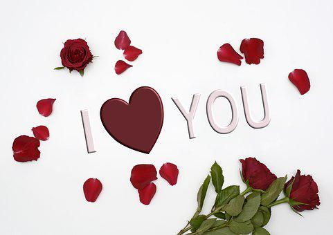 Love, Heart, Red, Romance, Valentine's Day, Flowers
