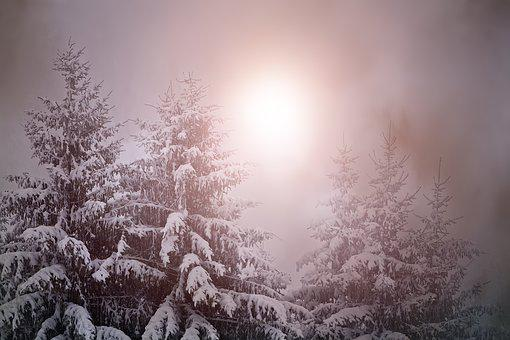 Wintry, Weather Mood, Light, Lighting, Winter, Snow