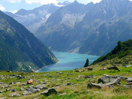 Lake, Mountains, Reservoir, Austria-tirol-zillertal