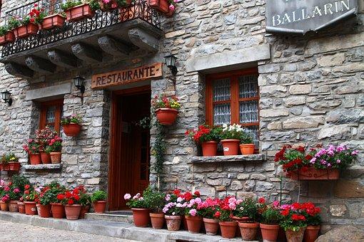 Restaurant, European Restaurant, Flowers In Pots