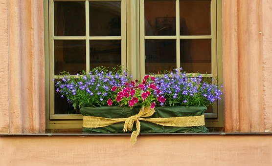 Floral Decoration, Window Sill, Window, Flower Box
