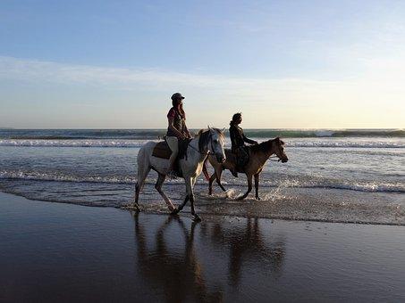 Walk On The Beach, Horses, Bali, Beach, Sea