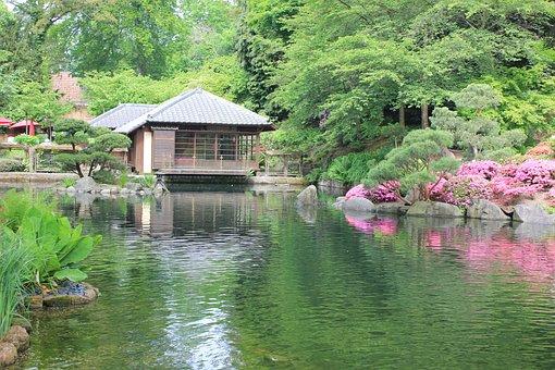 Kaiserslautern, Japanese, Japanese Garden, Garden