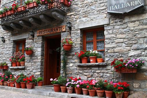 Restaurant, European Restaurant, Flowers In Pots