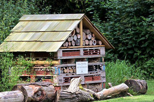 Bug Hotel, Oakley Court Hotel, Wood, Insect, Worm, Bug