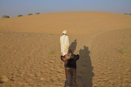 Desert, Sand, Dry, Travel, Outdoors, Camel, Loneliness