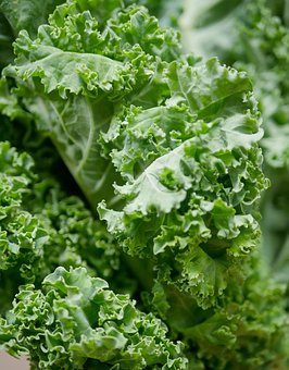 Vegetable, Leaf, Food, Flora, Kale, Organic, Leafy