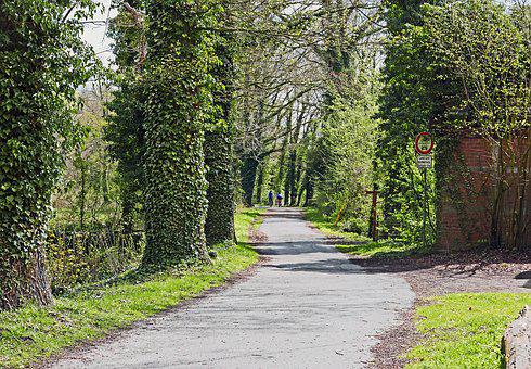Bicycle Trail, Münsterland, Parklandschaft, Avenue