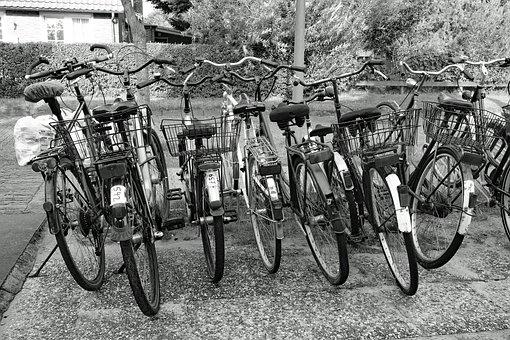Wheel, Bike, Wheels, Bicycles
