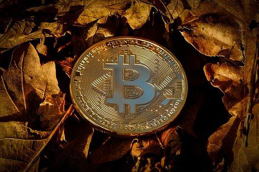 Bitcoin, Currency, Finance, Coin, Crypto