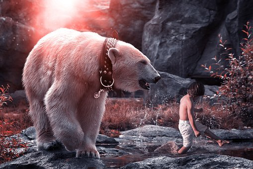 Polar Bear, Predator, Child, Play, Mammal, Nature