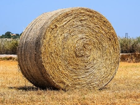 Straw, Hay, Agriculture, Nature, Landscape, Field, Bale