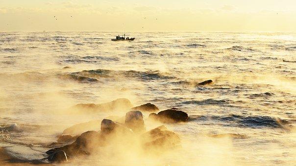 Sea, Beach, Coast, Surf, Fisherman, Gangneung