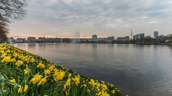Waters, Panorama, River, Nature, Reflection, Alster