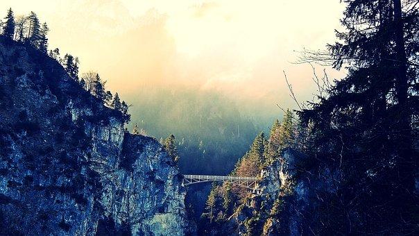Nature, Outdoors, Wood, Landscape, Mountain, Misty