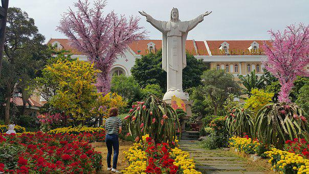 Garden, Tree, Flower, Park, Flora, Viet Nam, Church