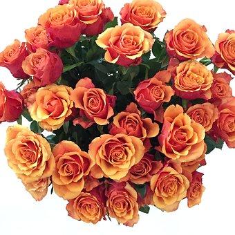 Bouquet De Fleurs, Floral, Bunch, Petal, Love