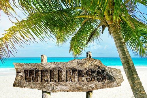 Wellness, Palm, Beach, Sand, Island, Tropical, Idyllic