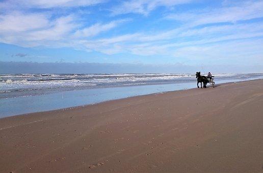Sand, Waters, Beach, Sea, Travel, Horse Drawn Carriage