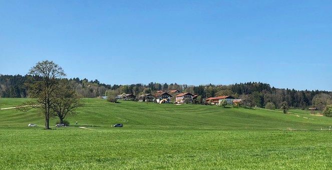 Grass, Nature, Panorama, Landscape, Tree, Field, Rural