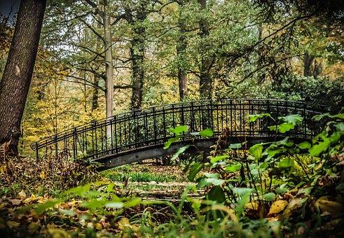 Bridge, Park, Romantic, Pond, Water, Scrubs, Autumn