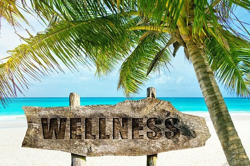 Wellness, Palm, Beach, Sand, Island, Tropical, Idyllic