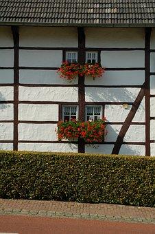 House, Architecture, Window, Building, Garden, White